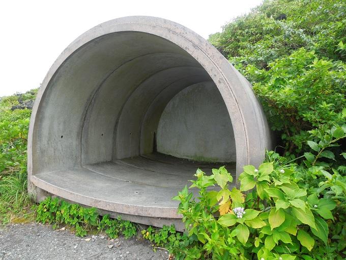 伊豆大島旅行記21