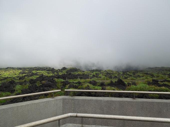 伊豆大島旅行記20