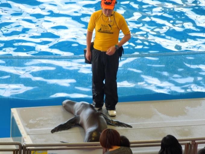 アクアワールド茨城県大洗水族館デート6