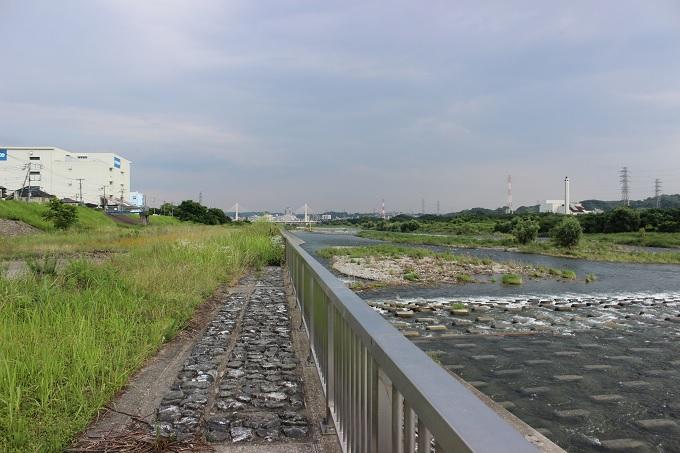 多摩川をジョギング29km