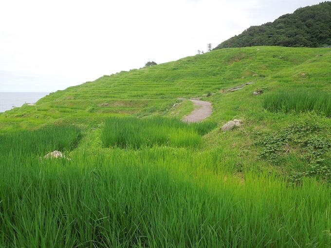 ワニ銀金沢旅行14