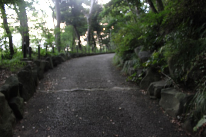 ワニ銀大磯城山公園ダイヤモンド富士1
