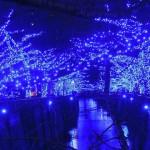 12月25日のクリスマスの日に中目黒の「青の洞窟」に行ってみた。その後「渋谷ヒカリエ」の展望台寄ってみた。
