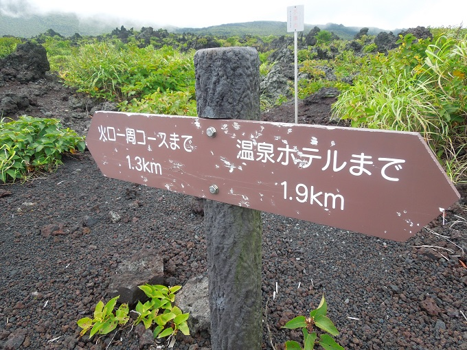 伊豆大島旅行記12