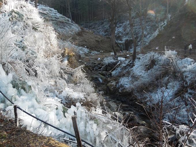 ワニ銀芦ヶ久保の氷柱1