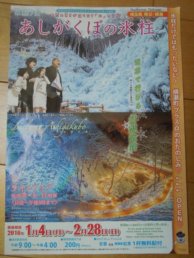 ワニ銀芦ヶ久保の氷柱11