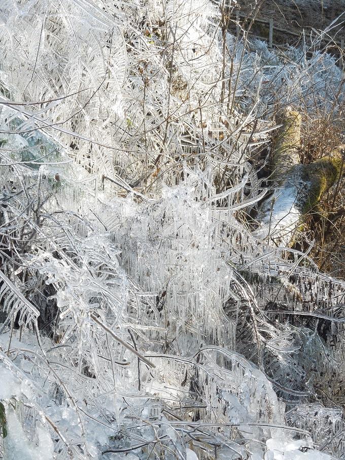 ワニ銀芦ヶ久保の氷柱2