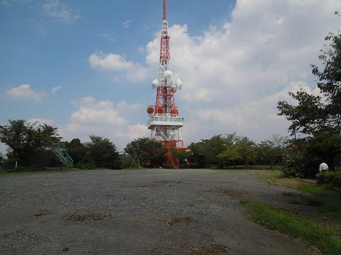 ワニ銀高麗山公園4