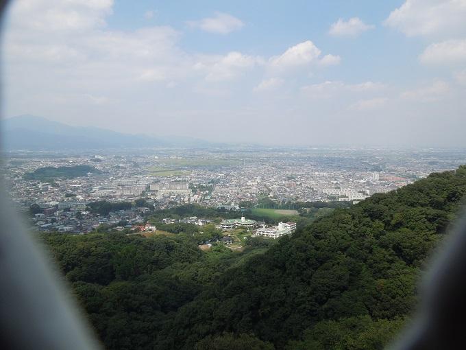 ワニ銀高麗山公園9